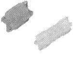 image049-2